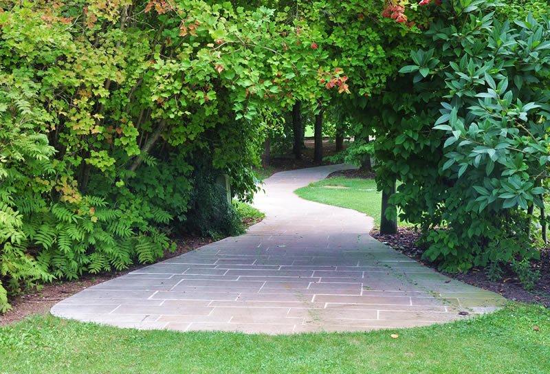Darren Leech Landscapes & Gardening